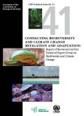 CBD Technical Series 41: Biodiversity and Climate Change Mitigation and Adaptation: Report of the Second Ad Hoc Technical Expert Group on Biodiversity and Climate Change
